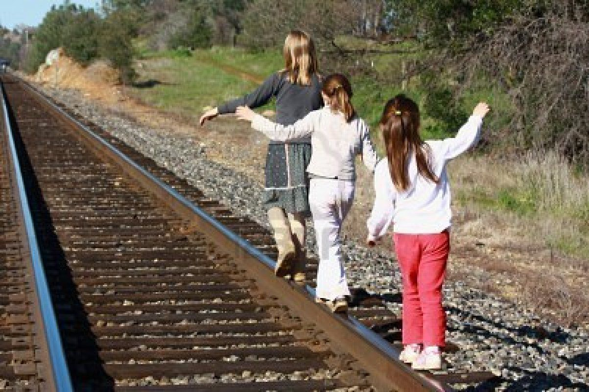 Dog on Train Track stock image. Image of journey, carriage