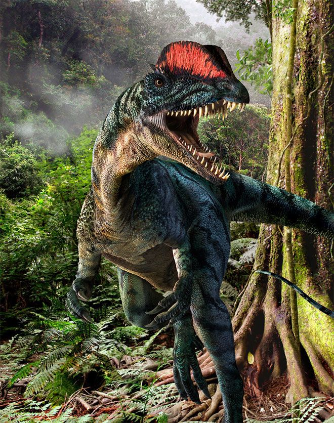 Showcase of Modern Paleoart: 60 Fearsome Dinosaur Illustrations & 3D Renders #dinosaurillustration
