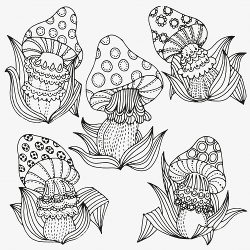 Fantasy Mushroom Coloring Page Mushrooms Website and Easy