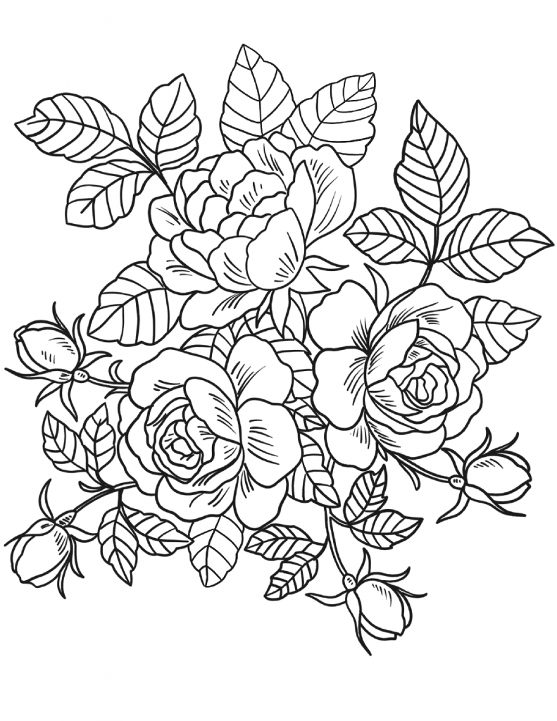 - Floral Coloring Pages For Adults Rose Coloring Pages, Detailed