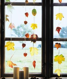 Schöne Aussicht: Die bunten Herbstblätter am Fenster sorgen für einen echten Farbtupfer und machen Lust auf den Herbst. Dazu einfach ein paar Blätter sammeln und auffädeln. Direkt am Fenster aufgehängt, zieren die Girlanden den Ausblick in die Natur.