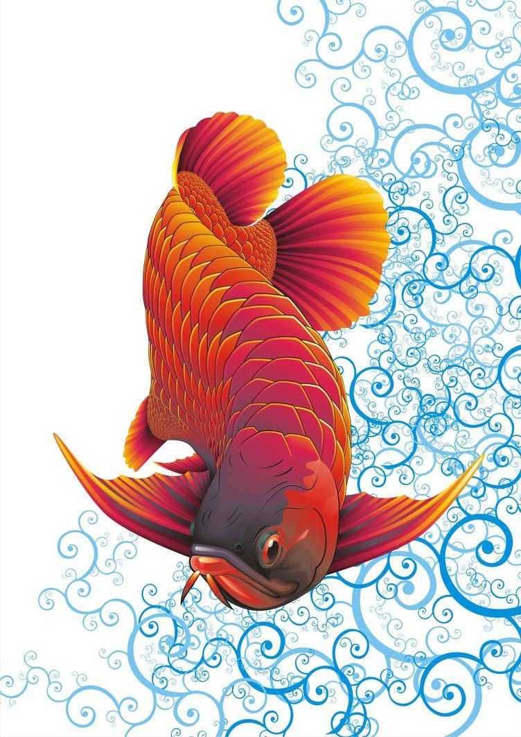 Arowana Vector By Dnhart13 D3iogu6 Jpg 752 1063 ศ ลปะญ ป น ภาพวาด ปลาทอง