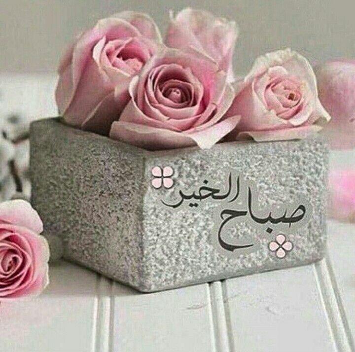 Pin By Madiha Younas On صباح الخير Beautiful Rose Flowers Morning Love Quotes Morning Greeting