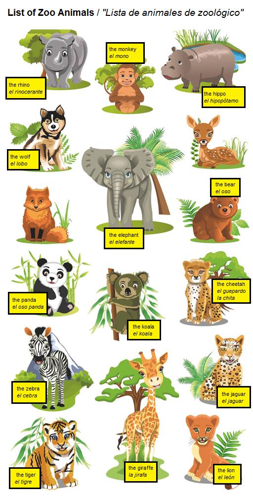 List of Zoo Animals / Lista de animales de zoológico #spanish ...