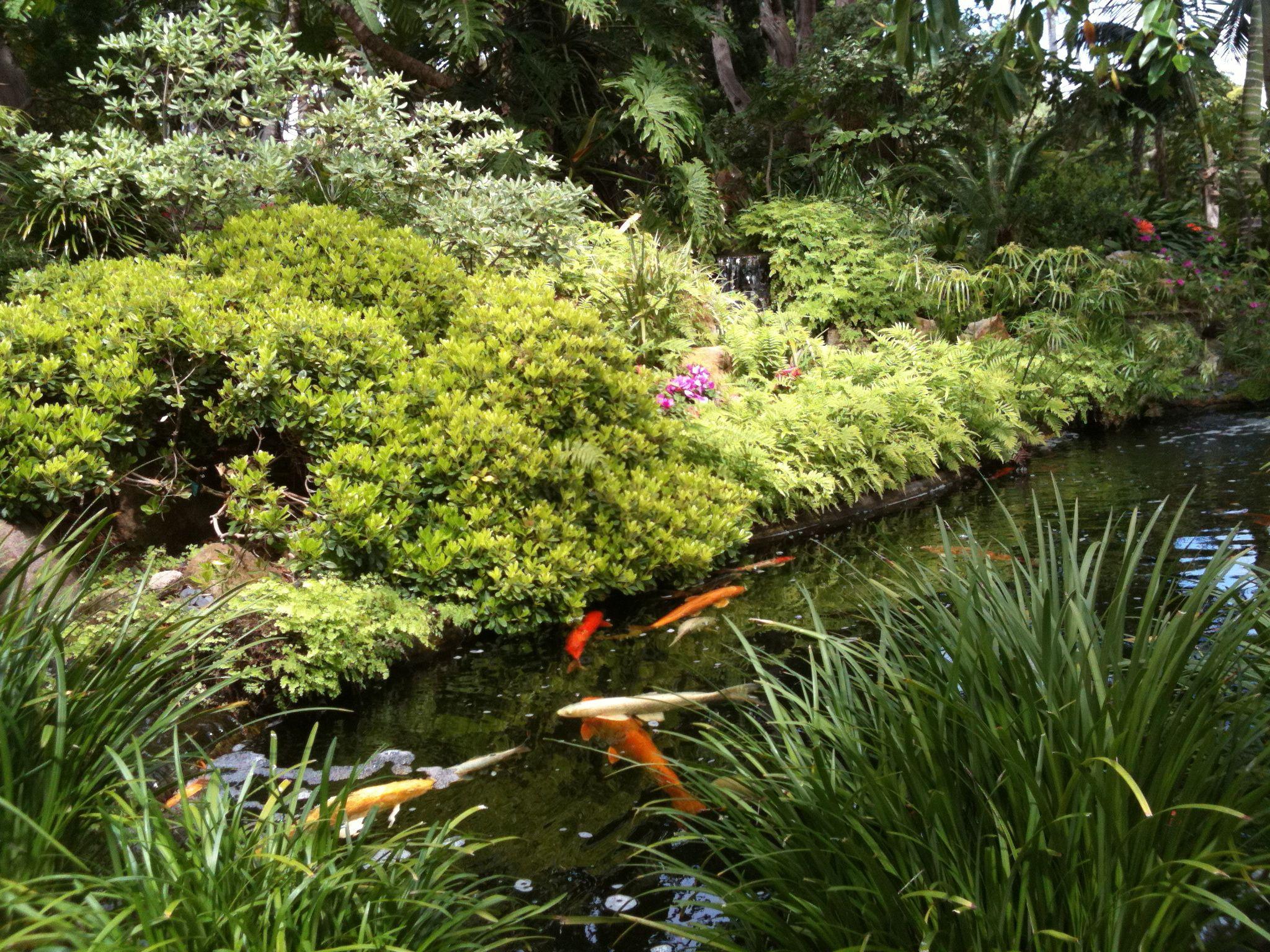 f38a2ead90043abef204473e09e3e1b3 - Self Realization Fellowship Meditation Gardens Encinitas