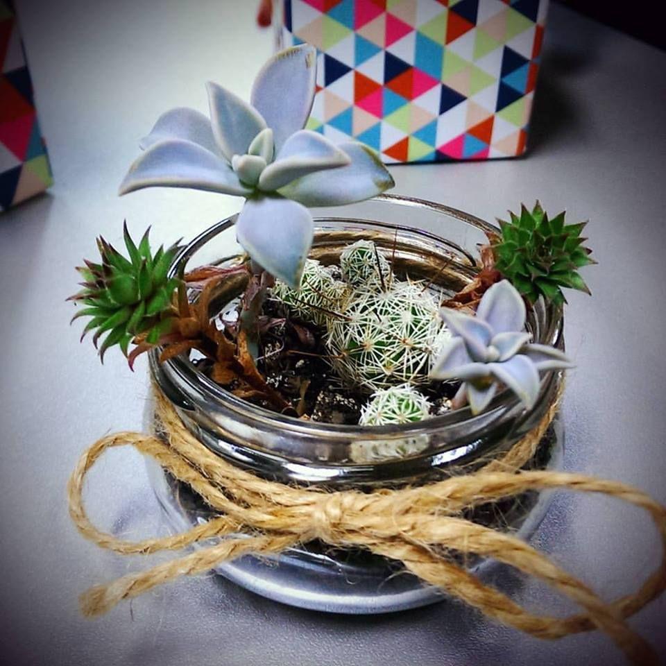 #diy #succulentplant #jar #officedesign #cactus