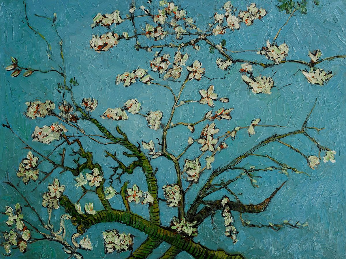 Vincent Van Gogh, Branches of an Almond Tree in Blossom - Hand ... for Almond Blossom Van Gogh Poster  173lyp