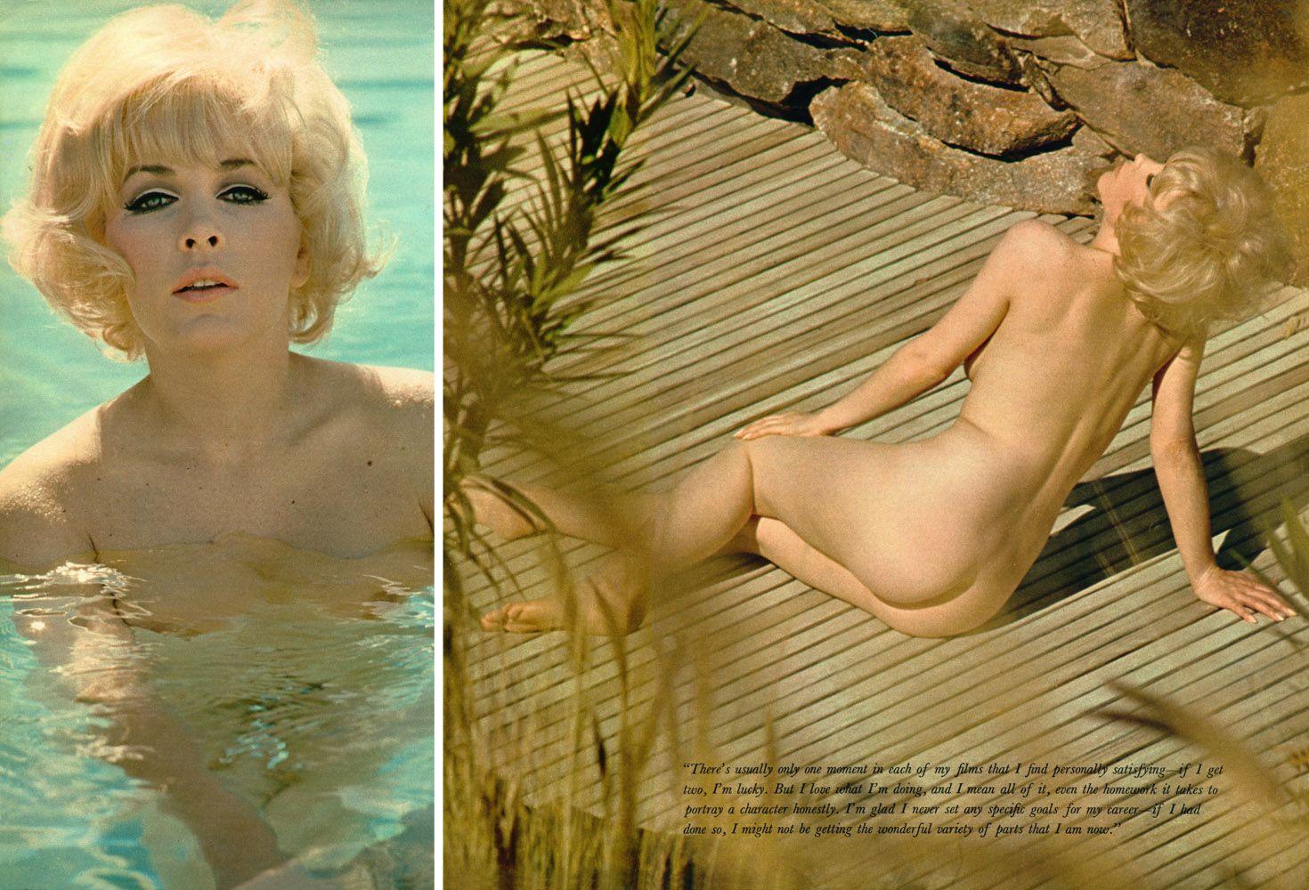 Stella Stevens Porn Star