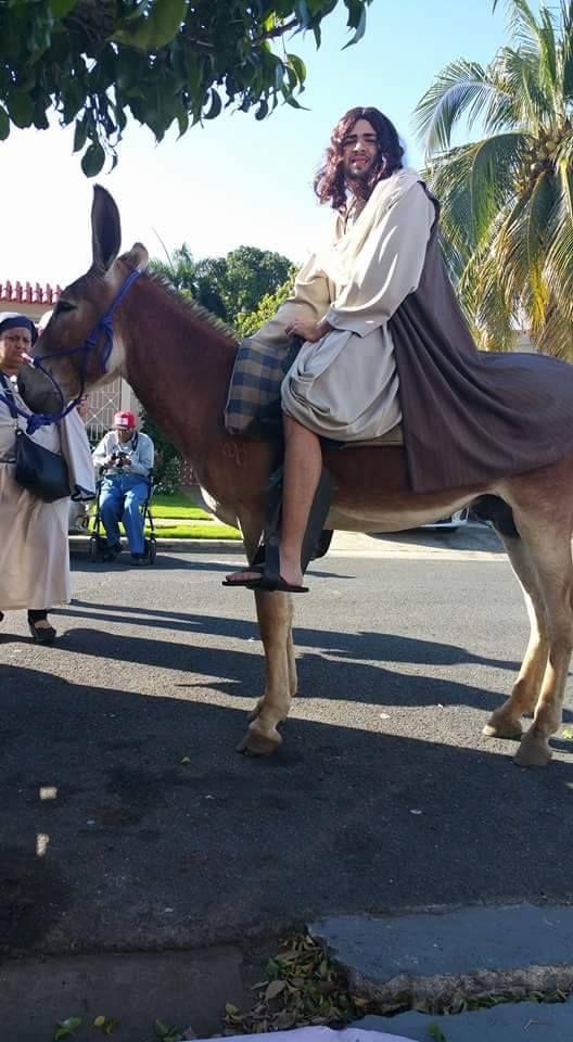 Cortesía: CRIADERO VILLA LUZ, Girardota, Antioquia (Colombia).