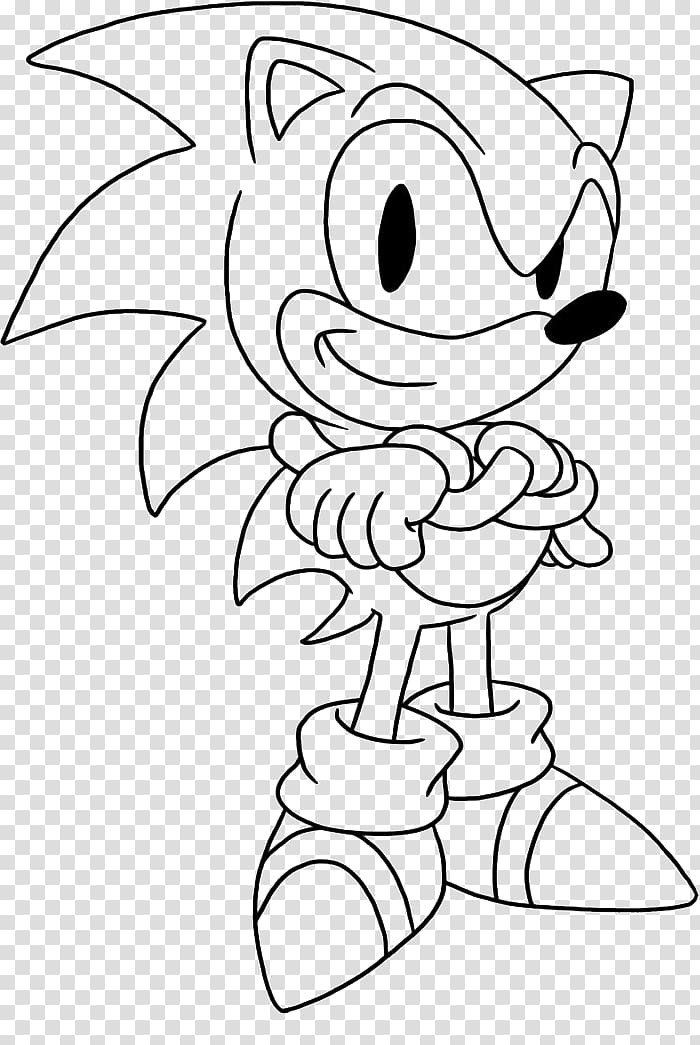 Sonic The Hedgehog Coloring Books Sonic Chaos Amy Rose Sonic Colors Shadow The Hedgehog Coloring Books Hedgehog Book Anatomy Coloring Book