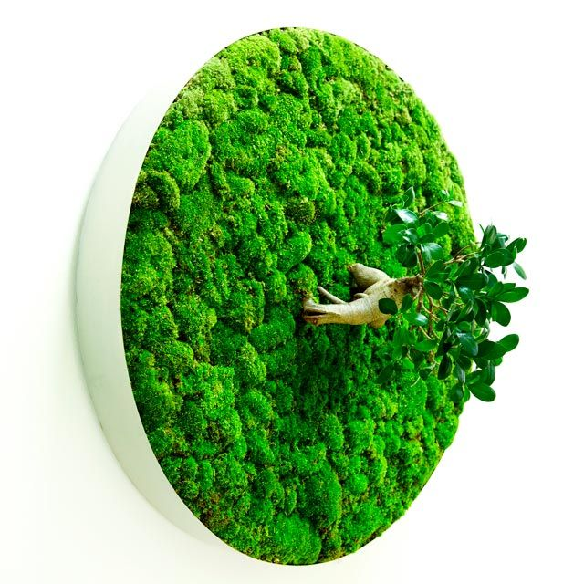 Would be perfect in our 'Green room'  - Plant Sculptures by Azuma Makoto