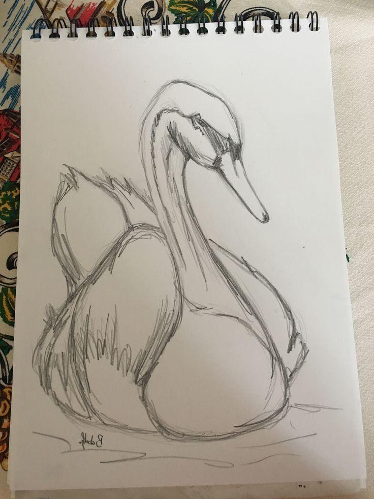 (notitle) – Zeichnungen – #notitle #Zeichnungen – Animal Drawing