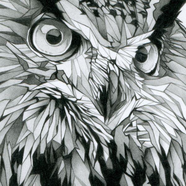 Cool use of geometric shapes black and white pencil for Cool drawings of owls