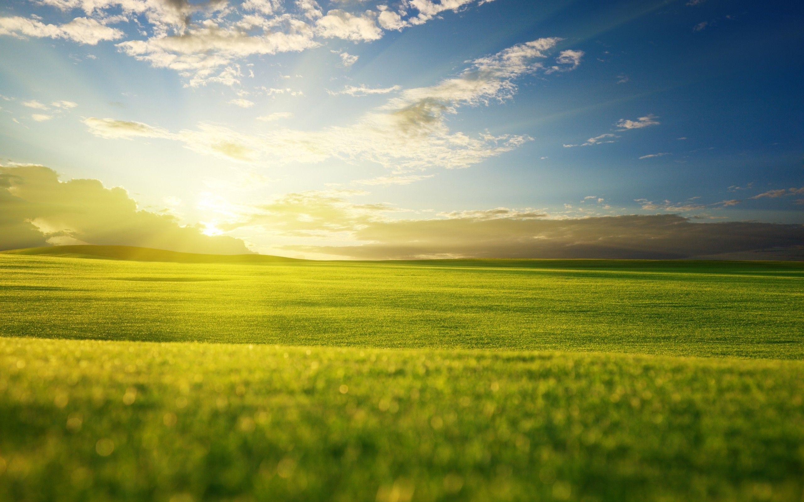 Beautiful green landscape wallpaper beautiful green for Beautiful landscapes