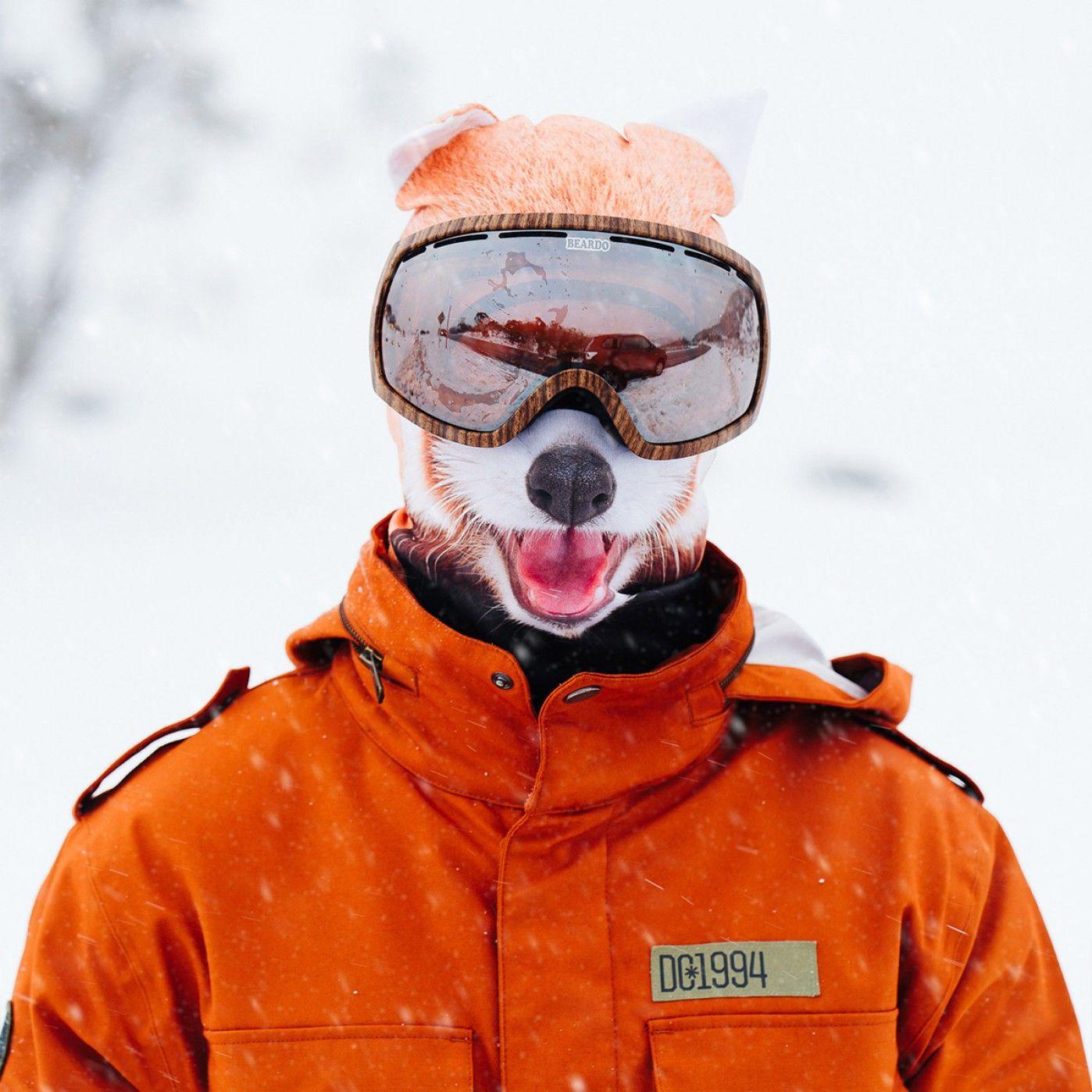 Cagoule de Ski Beardo Animaux - Panda roux