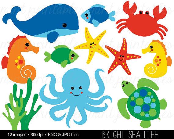 Sea Animal Clipart Under The Sea Baby Sea Creatures Clip Art Animal Clipart Whale Ocean Crab Commercial Personal Buy 2 Get 1 Free Animales Para Imprimir Manualidades De