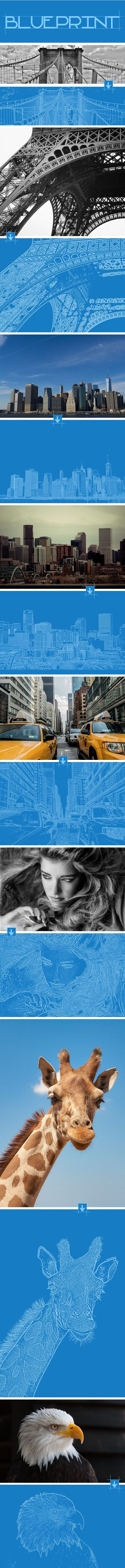 Blueprint Photoshop Action  #modern #outline #paper • Available here → http://graphicriver.net/item/blueprint-photoshop-action/11954375?s_rank=286&ref=pxcr