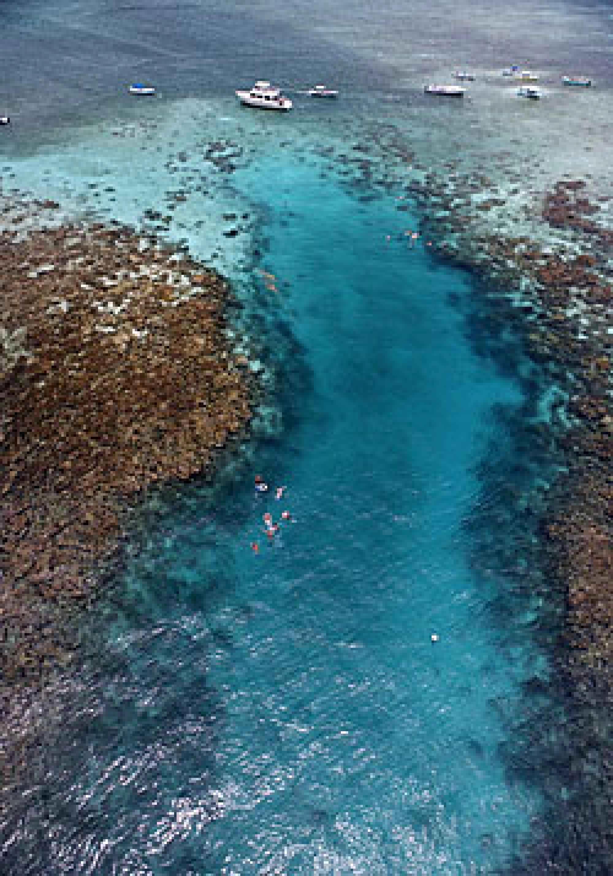 Top 10 Reasons You'll Love Belize For Scuba Diving