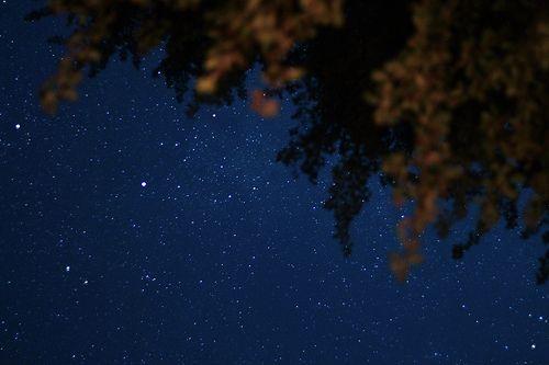 Alle stelle