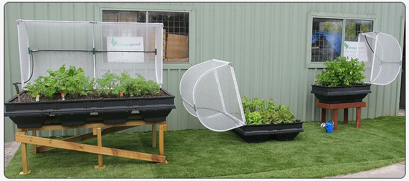 Vegepod Container Gardens Give You The Best Of Both Worlds 640 x 480