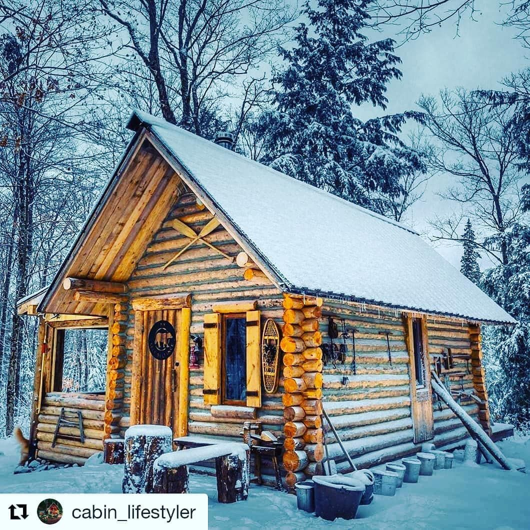 Cabin In The Woods In 2020 Cabins In The Woods House In The Woods Cabins And Cottages