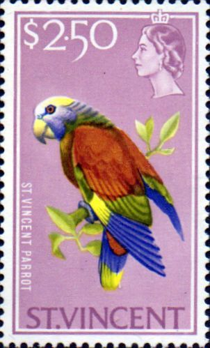 St Vincent 1965 SG 244 Amazon Bird Fine Mint SG 244 Scott 239 Condition Fine LMM Only one post charge applied on multipule purchases Details N B With