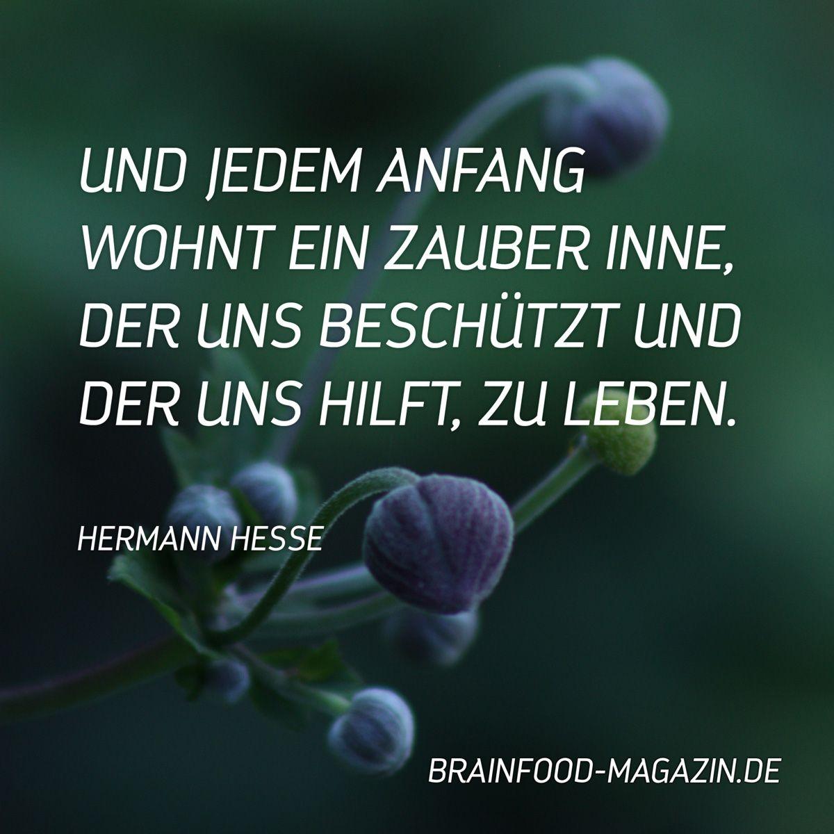 Lyrik Von Hermann Hesse Macht Mich Immer Wieder Auf Eine Angenehme Art Nachdenklich Vielleicht Geht Es Dir Auch So Dann Kann Ich Dirses Buch