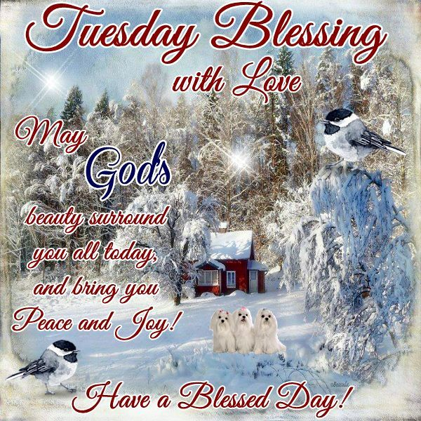 Good Morning, Happy Tuesday. I pray that you have a safe ...