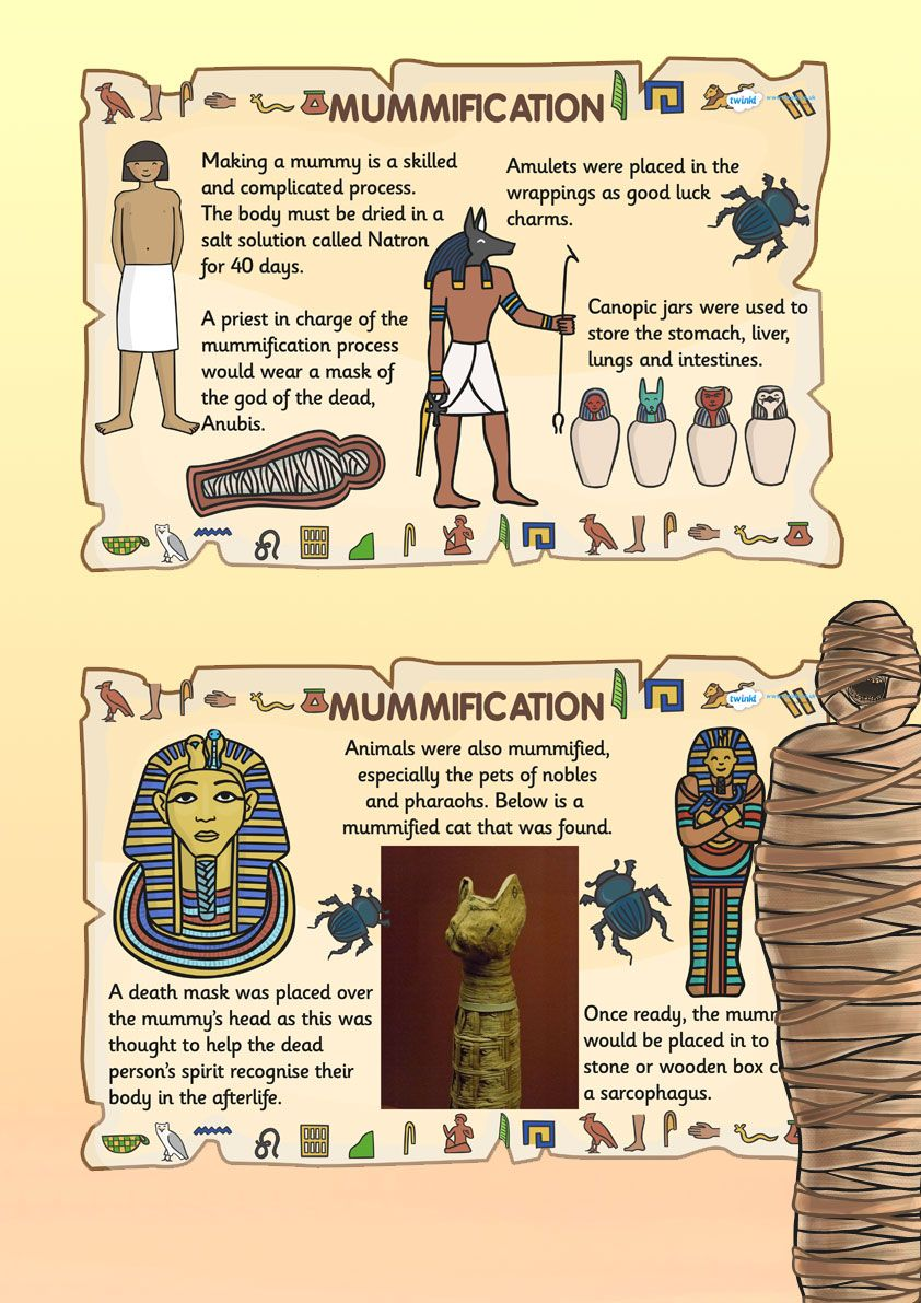 Poster design ks2 - Ks2 Ancient Egypt Mummification Posters