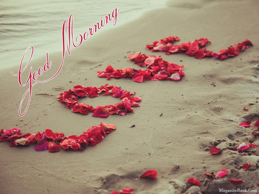Heart Touching Good Morning Images Good Morning Images Images Of Good Morning Heart Touching Good Morning Lo Cute Love Wallpapers Love Wallpaper Love Flowers