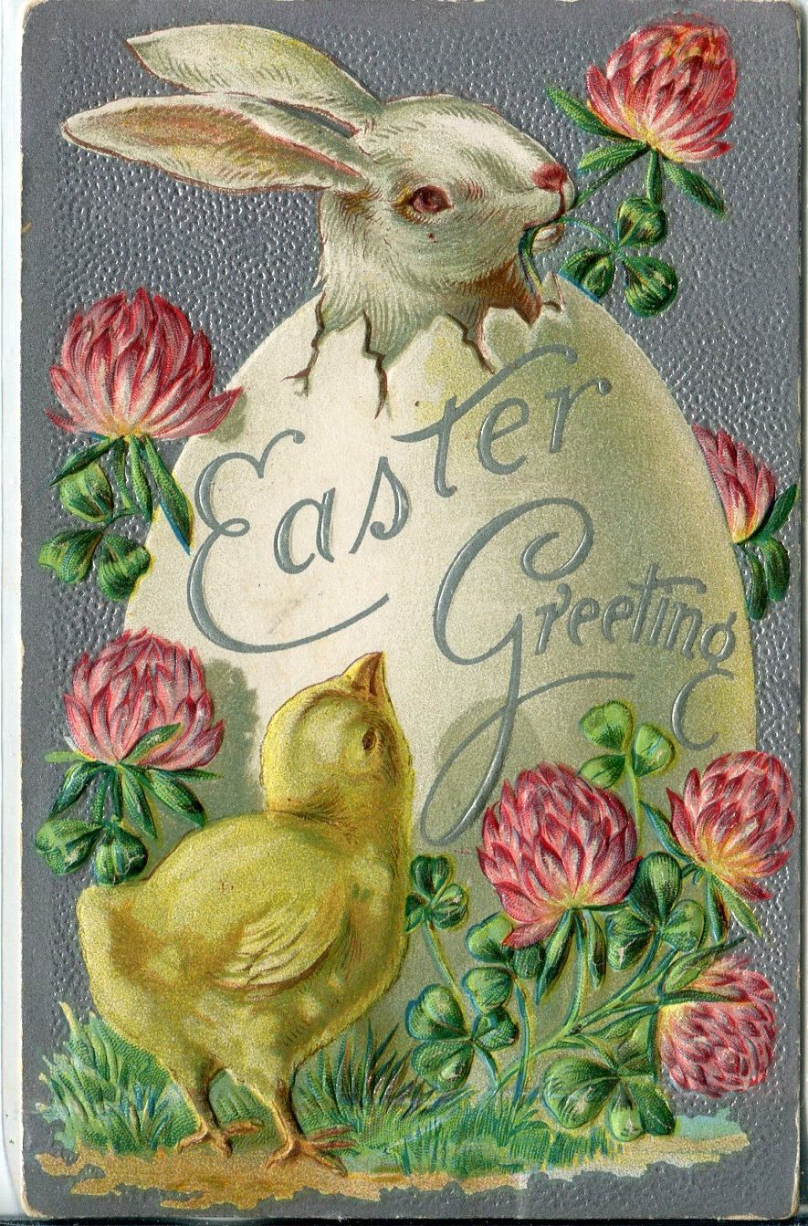 Easter Greeting Chick With Bunny Rabbit In Egg Vintage Postcard