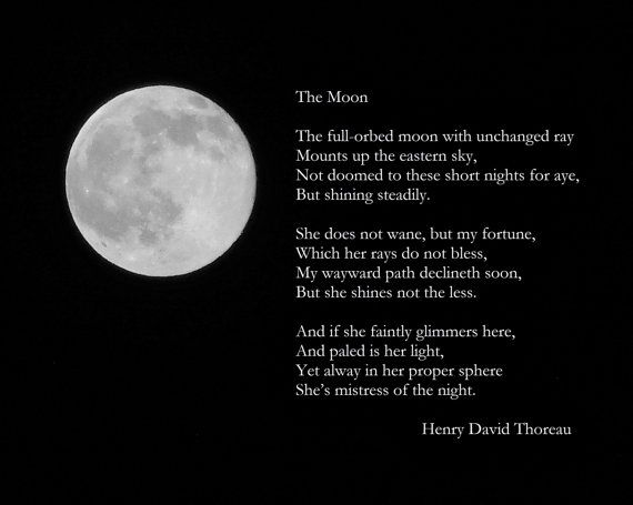 FULL-ORBED MOON--Lunar Photography, Full Moon, Picture of Moon, Henry David Thoreau Poem, Picture of Full Moon, Astronomy, Moon Photograph #fullmoonquotes