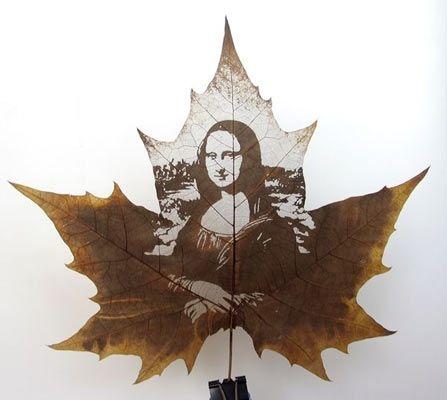 Cinar Yapragina Resim Tablolar Sanat Tasarimlari Sonbahar Yapraklari
