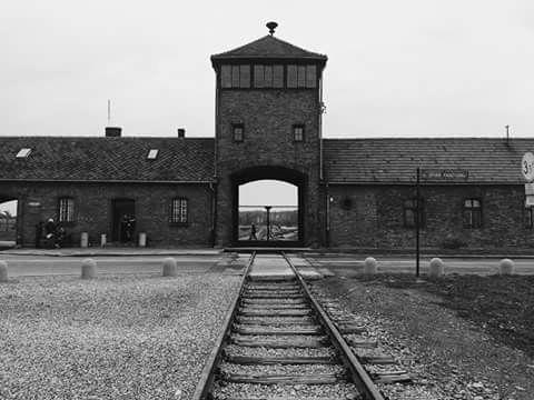 Resultado de imagen de campos de concentración auswitch birkenau