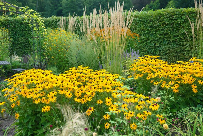 1 x 1 der beetgestaltung gardens garten and garden ideas for Garten beetgestaltung