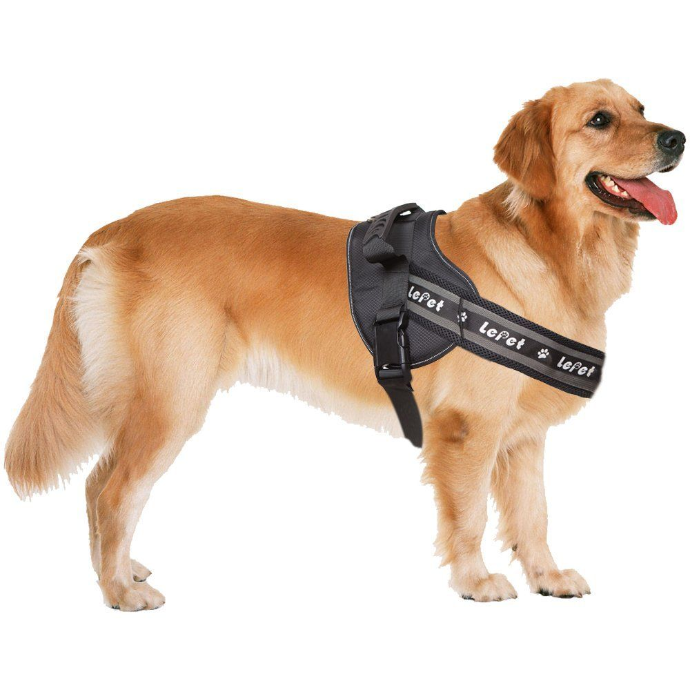 Dog Vest Harness Lepet Dog Harness For Large Dogs Suitable For