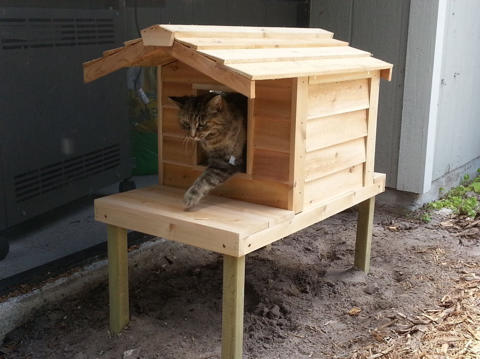 Outdoor Cat House Elevated