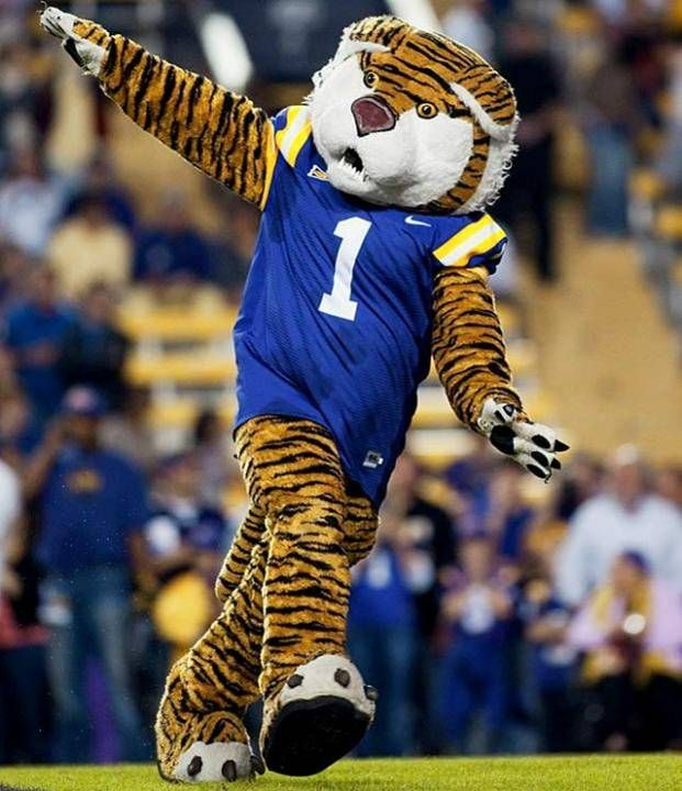 Dance Spin Skip Pretend You Re An Airplane Whatever Basically A Good Rule For Mascots Is To Remember What It Was Like Lsu Tigers Football Lsu Lsu Football