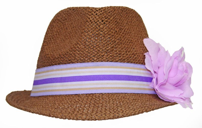 7855c082991 Straw Fedora with Striped Band and Purple Flower - PURPLEologist.com ...