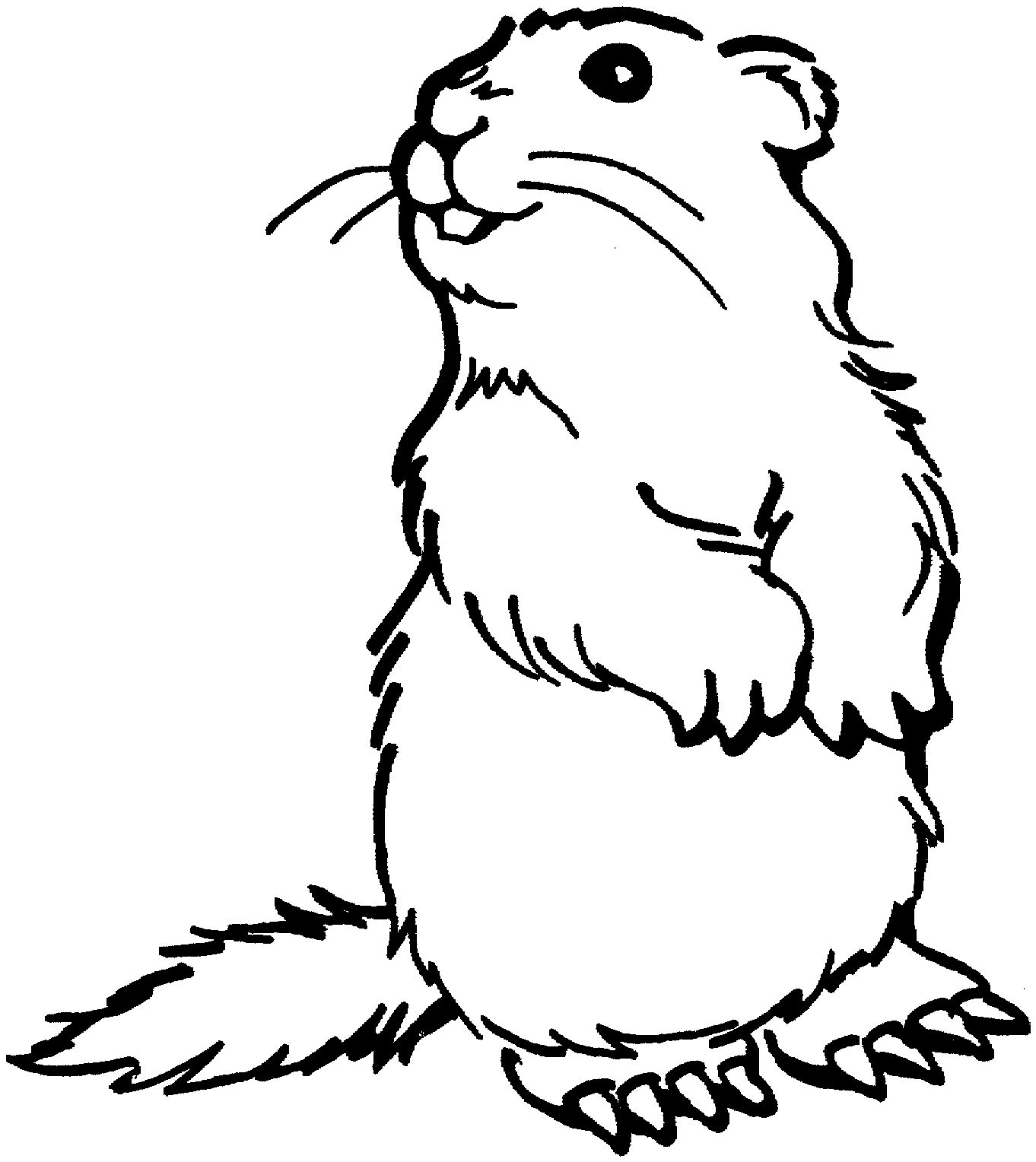 Grassland Animals Coloring Pages Free Animal Coloring Pages Dog Coloring Page Puppy Coloring Pages