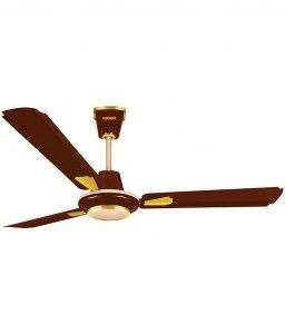 29 off on luminous 1200 mm poem ceiling fan in snapdeal at lowest 29 off on luminous 1200 mm poem ceiling fan in snapdeal at lowest price aloadofball Image collections