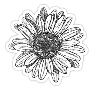 'sunflower doodle' Sticker by stickersnstuff