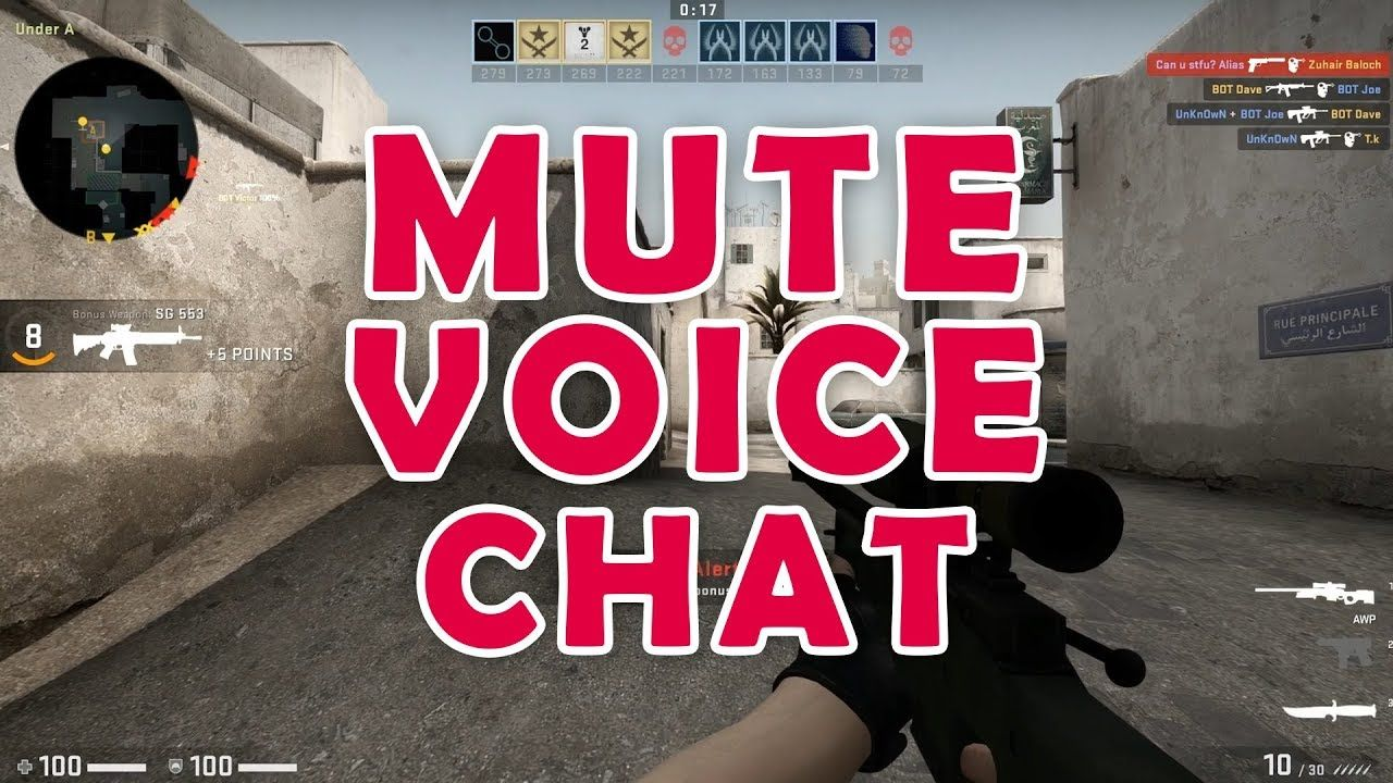 How To Mute Voice Chat In Csgo Counter Strike Global Offensive 2019 Voice Chat The Voice Chat