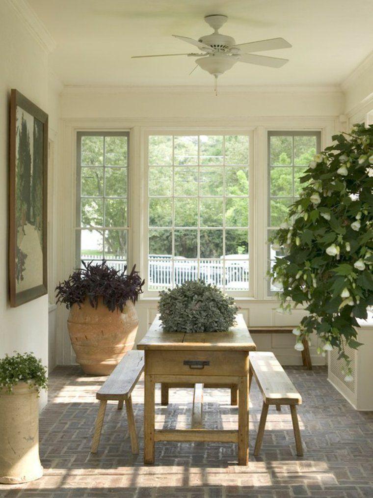 Wenn Deco machet gute Stimmung in unserem Hause -   - tipps pflege pflanzen wintergarten