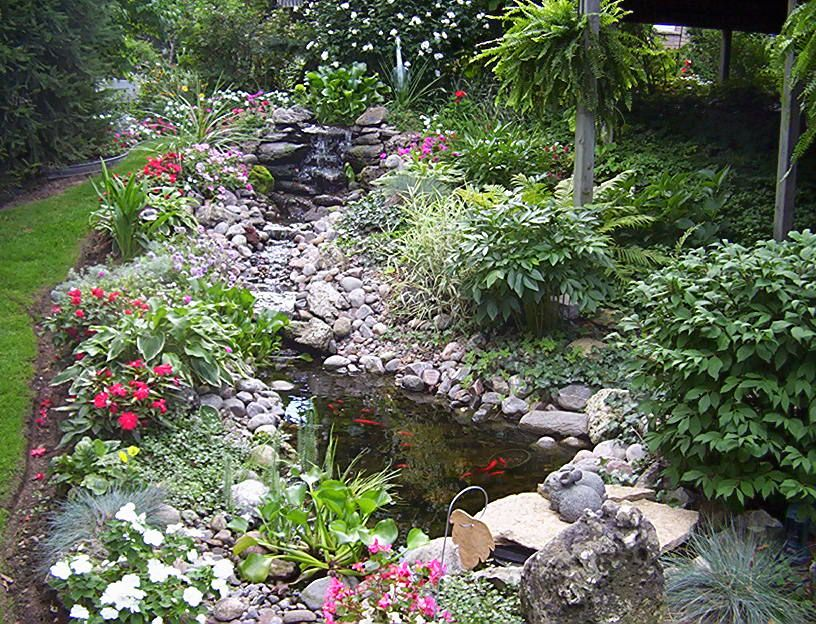 Image gallery natural ponds and gardens for Natural ponds and gardens