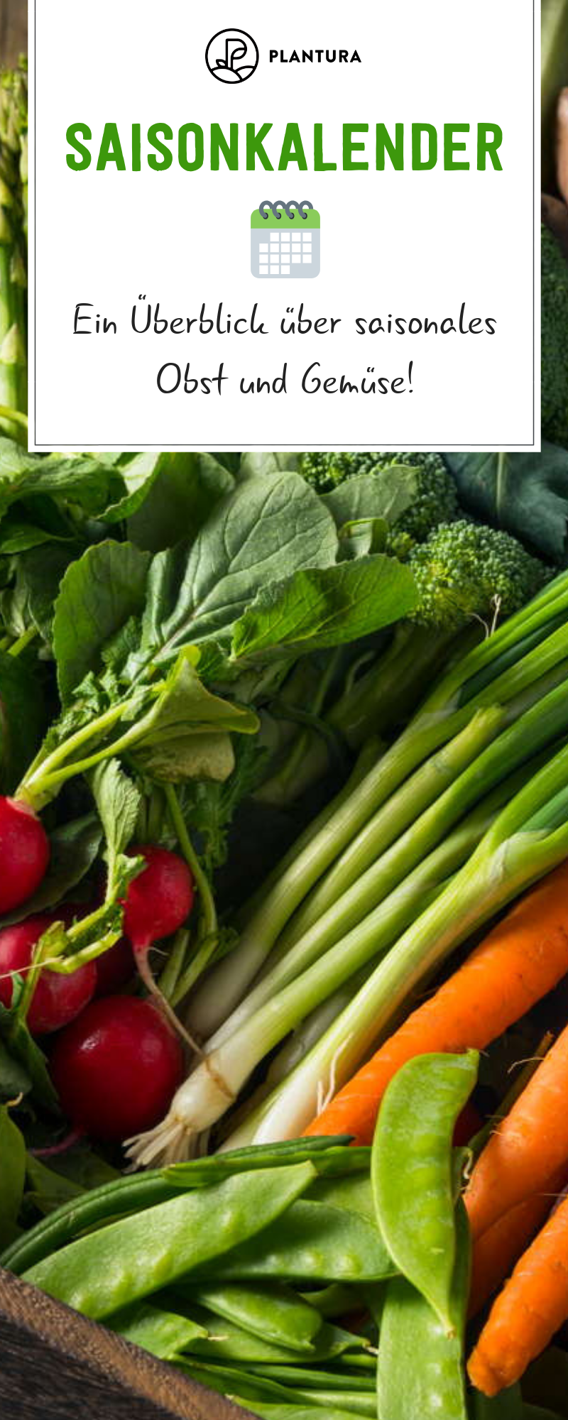 Saisonkalender: Wann wächst welches Gemüse & Obst #gemüsegartenanlegen