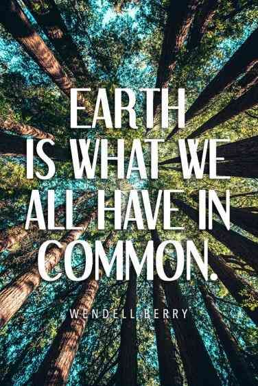 40 Best Environment Quotes To Inspire You To Help Save The Planet