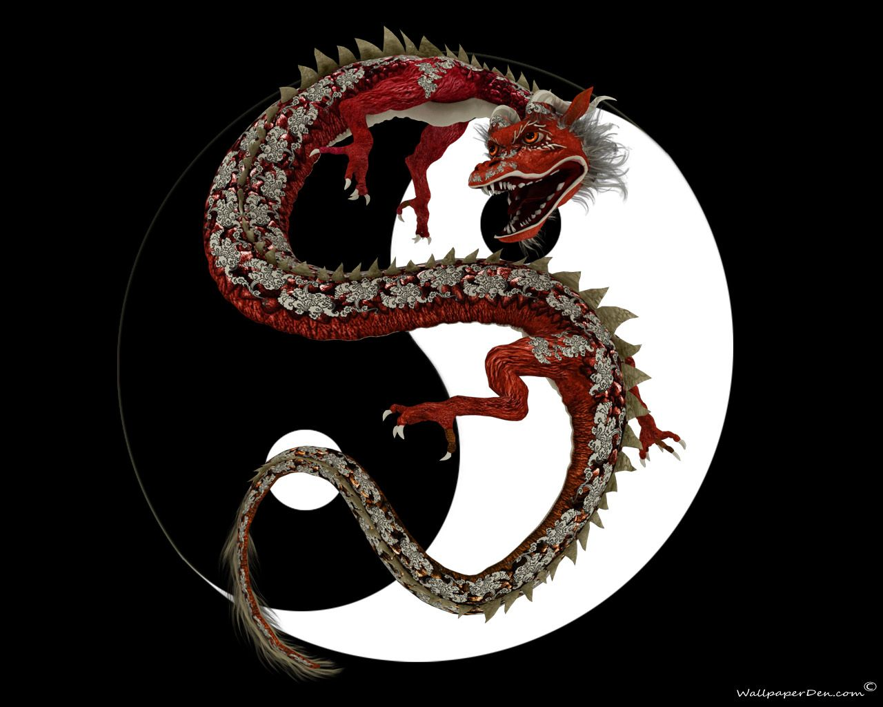 Pictures Of Chines Drangons Dragon Chinese Dragons