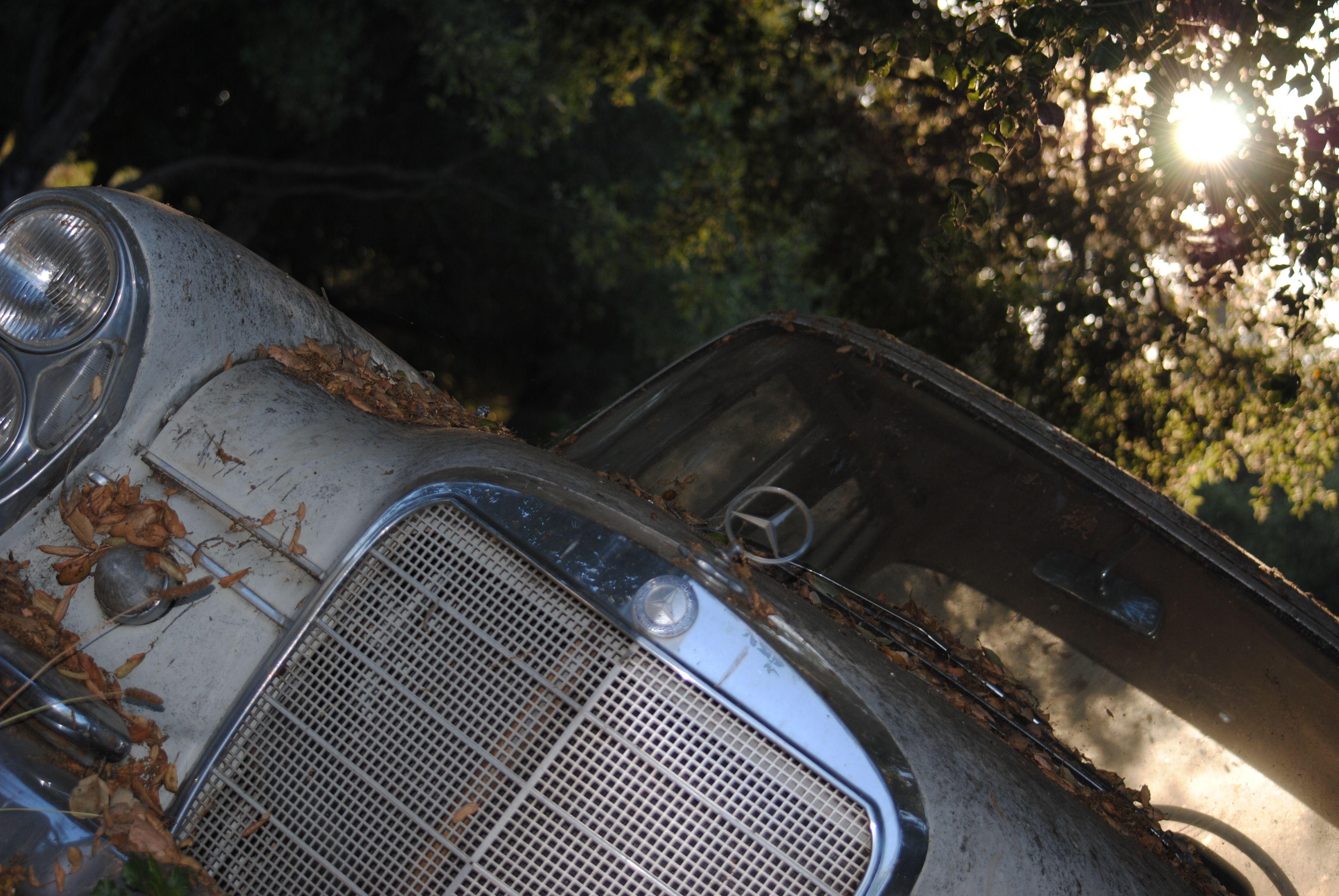 1964 MercedesBenz 220SE Mercedes benz