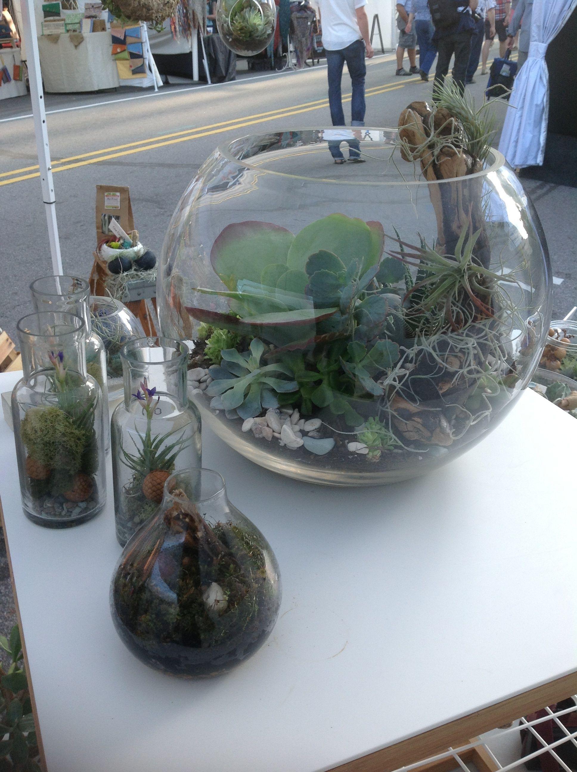 The ZEN  Succulent at Artsposure in Downtown Raleigh